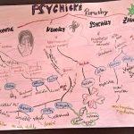Myšlenková mapa - psychické poruchy 2.